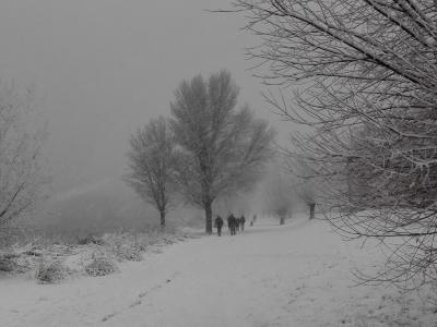 99 Winters Almere